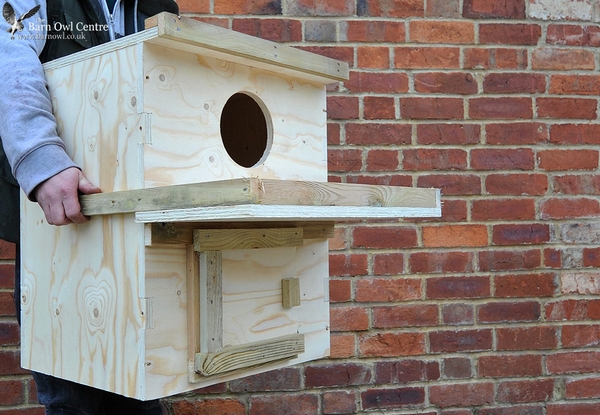 Indoor Barn Owl Nest Box (Made from 18mm Plywood) with inspection hatch